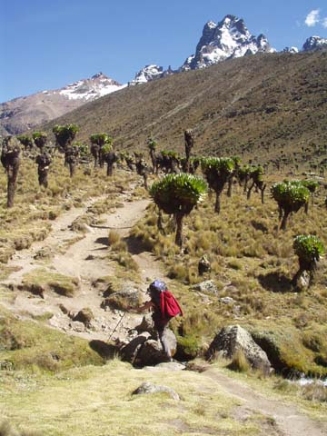Mount Kenia Karte.Mount Kenia Trekkingrouten